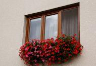 Výzdoba oken 3