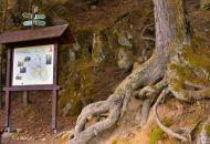 Procházka Balinským údolím