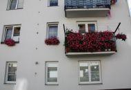 Výzdoba oken 15