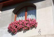 Výzdoba oken 10
