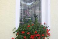 Výzdoba oken 7